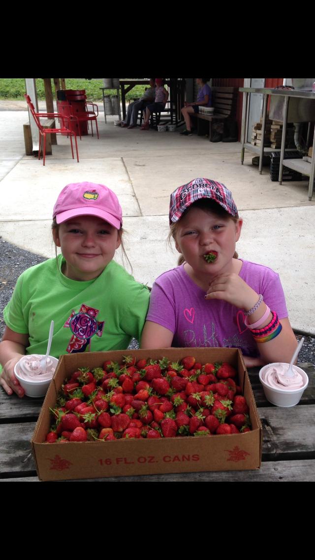 Sandy Graham Strawberry pickin