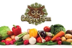 owl_pine_farm_2