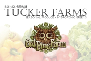 tucker_farms_and_owl_pine_2