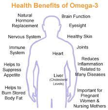 omega 3 body image