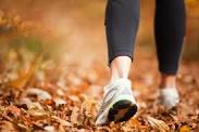 fall-walking